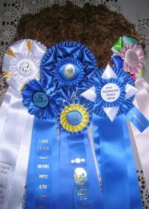 Kiara won lots of ribbons!