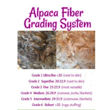Alpaca Fiber Fineness Grading Systems
